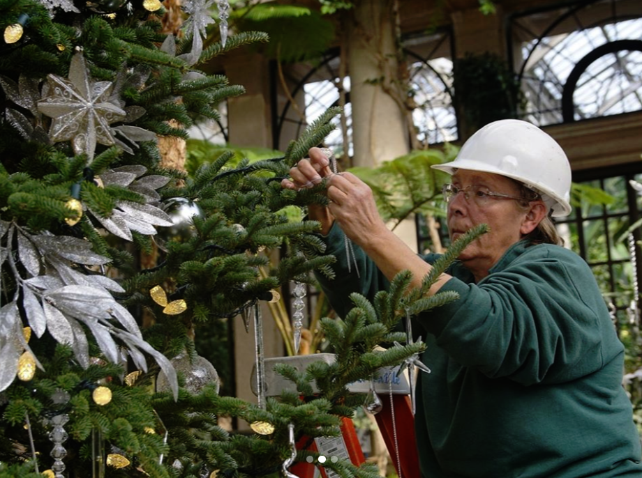 This year, 17 Fraser fir trees will be suspended in midair using a custom suspension system created by our Facilities Department.