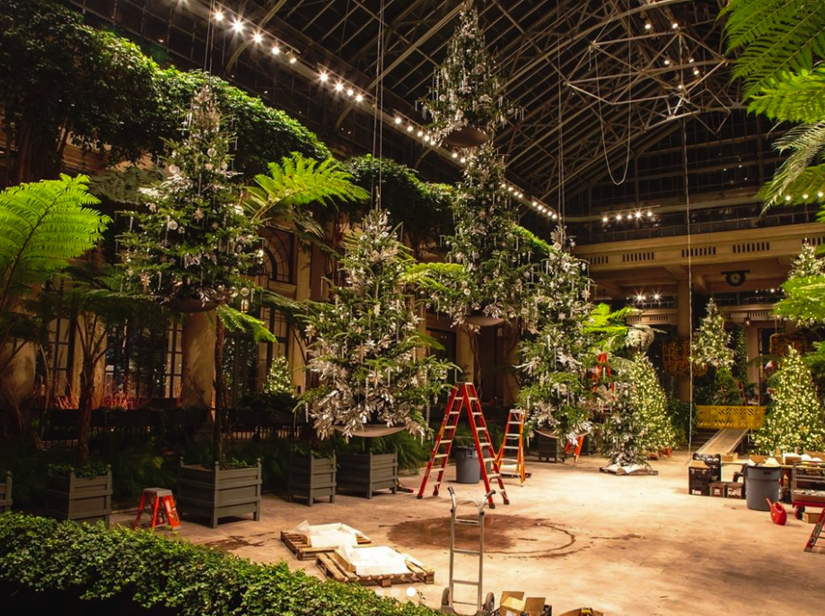 The final product will be a forest of floating trees, inspired by the scene in the Harry Potter movies of the floating candles in the Great Hall.