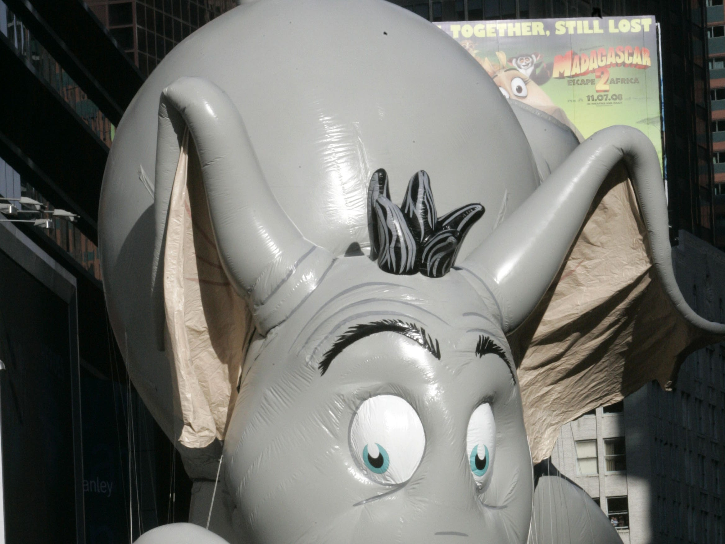 The Horton float moves through Times Square during the Macy's Thanksgiving Day Parade Thursday, Nov. 27, 2008, in New York. Horton, the compassionate elephant of Dr. Seuss books, is new to the parade this year. (AP Photo/Frank Franklin II)