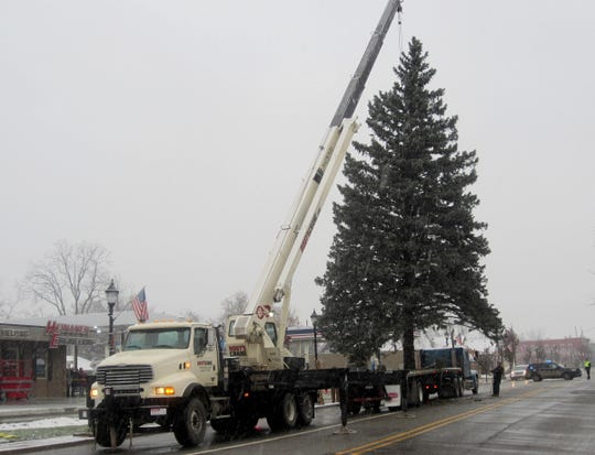 A 67 foot Blue Spruce is unloaded at Heinanen Engineering in South Lyon on Sunday, November 18, 2018. Jeff Heinanen, president of Heinanen Engineering, had tree installed in front of his business as the city's Christmas tree.