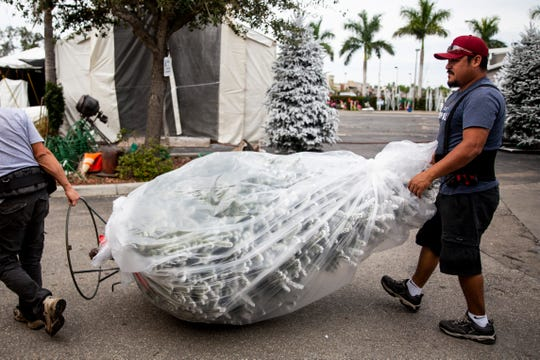 Enrique Sanchez, left, and Leandro Cervantes, right, prepare a tree for delivery on Thursday, November 22, 2018, at Heath Christmas Trees in Naples.