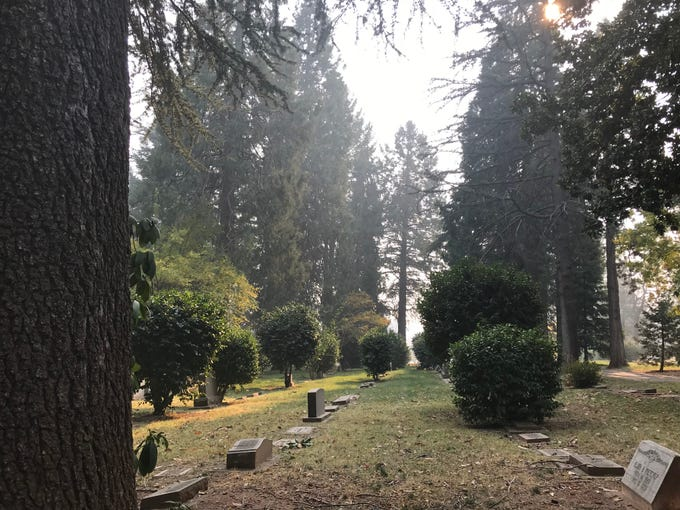 Headstones amid the giant trees at Paradise Cemetery in California.