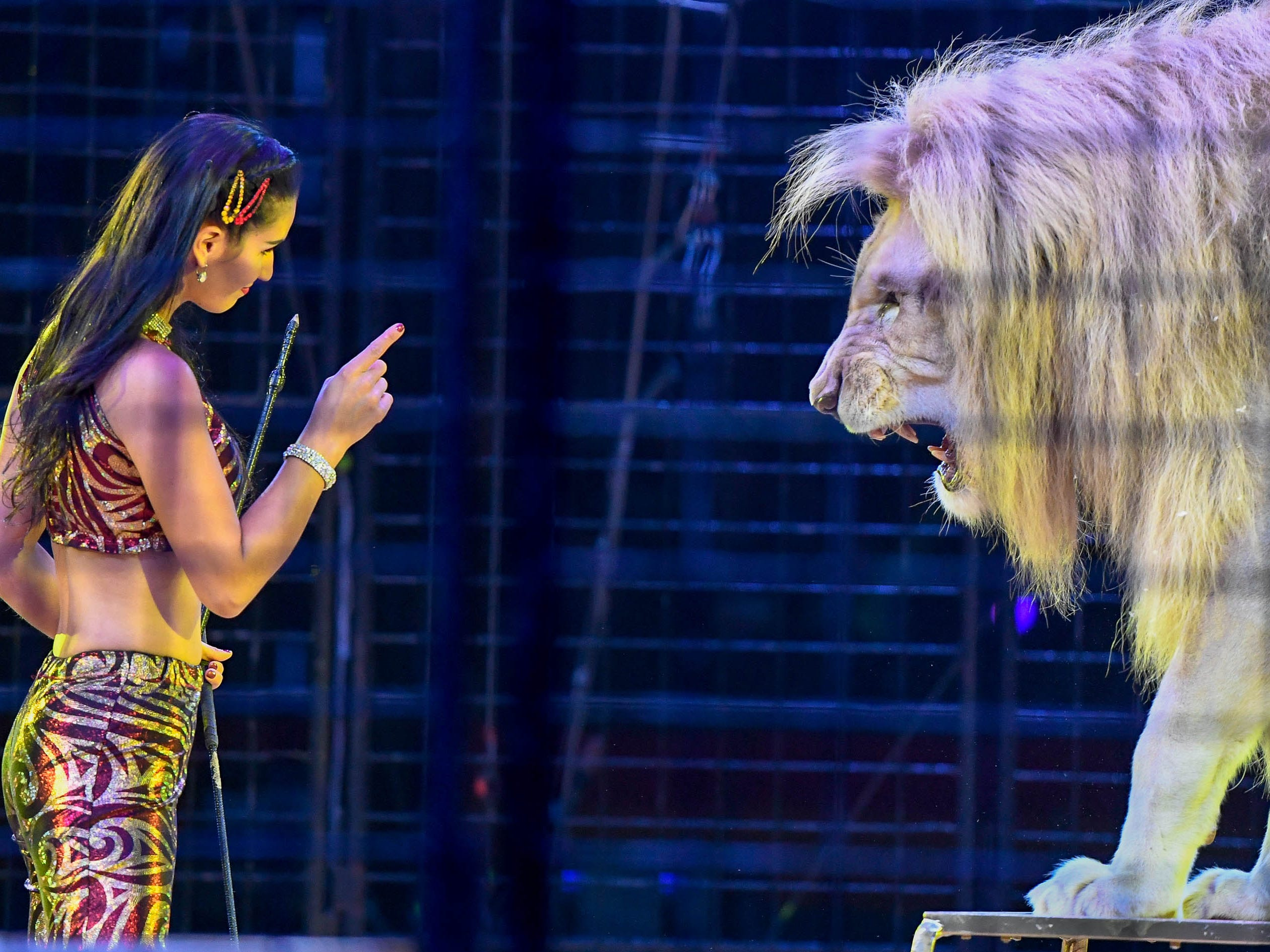 Lion trainer Colleen Pages tells Achilles the lion to behave during the 85th annual Hadi Shrine Circus at the Evansville Ford Center Friday, November 23, 2018.
