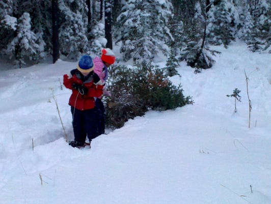 Gabe And Kayleigh Pull Tree Down The Trail 2011