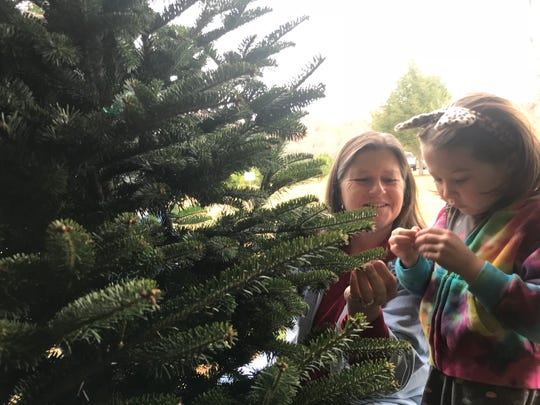 Lesa Adams and her granddaughter, Claire, study the tree they picked out for the holidays from Bluebird Christmas Tree Farm. Claire, 6, loves to top her family's tree with a star each year.
