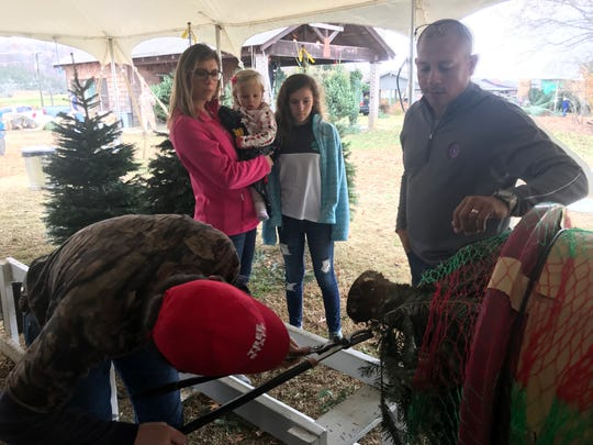 The McComes family watches the Christmas tree they picked out at Bluebird Christmas Tree Farm be prepared for them to transport home. The family has made a tradition of selecting their tree at the farm the day after Thanksgiving.