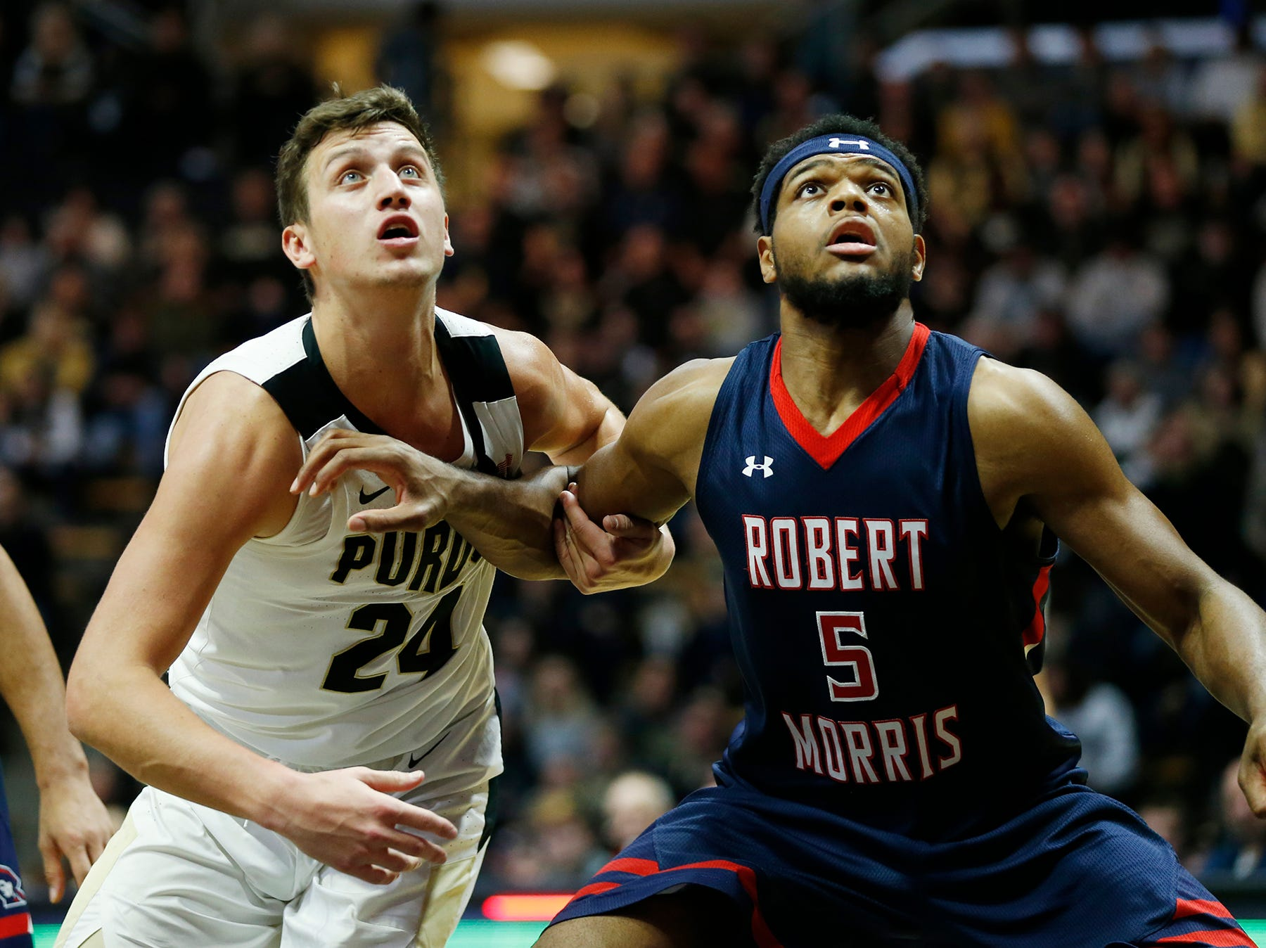Grady Eifert of Purdue and Malik Petteway of Robert Morris work for position Friday, November 23, 2018, at Mackey Arena. Purdue defeated Robert Morris 84-46.