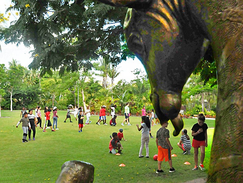 The Vicky C. and David Byron Smith Children's Garden is a playful and interactive world of vibrant flowers, bountiful vegetables, colorful butterflies, and native landscapes. The Garden is located within the Naples Botanical Garden.
