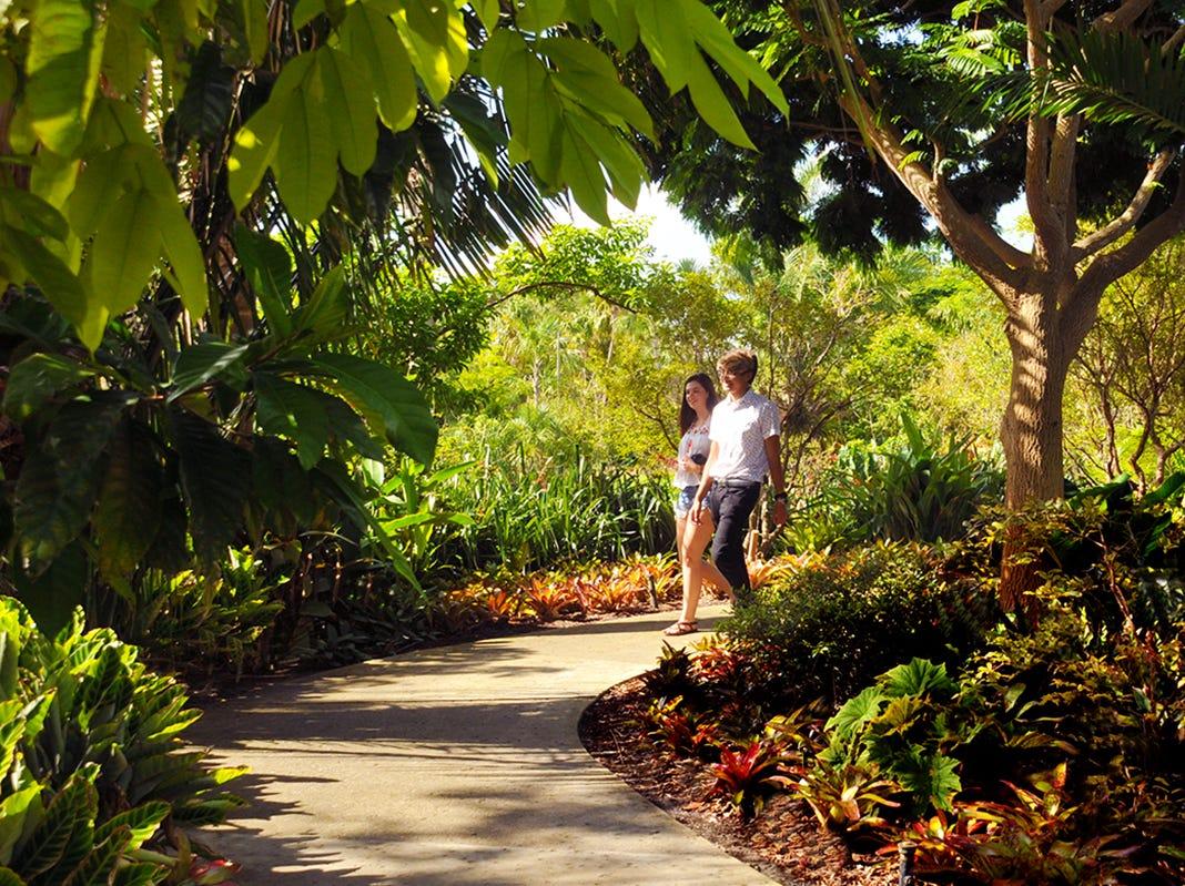 The Naples Botanical Garden offers many walkways threading through the gardens.