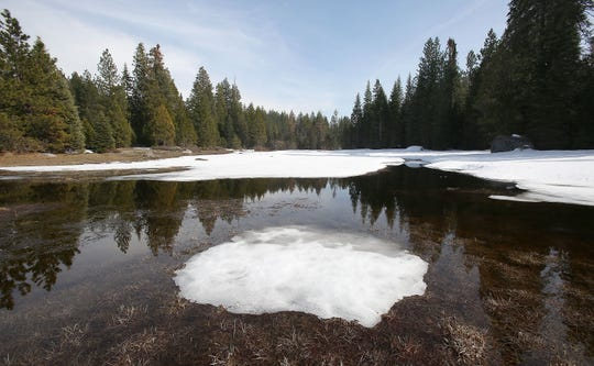 Melting snow forms a pool in a meadow in the Sierra National Forest in 2016. Data from snow sensors across the West show that the snowpack has been melting earlier on average as the climate has grown warmer.