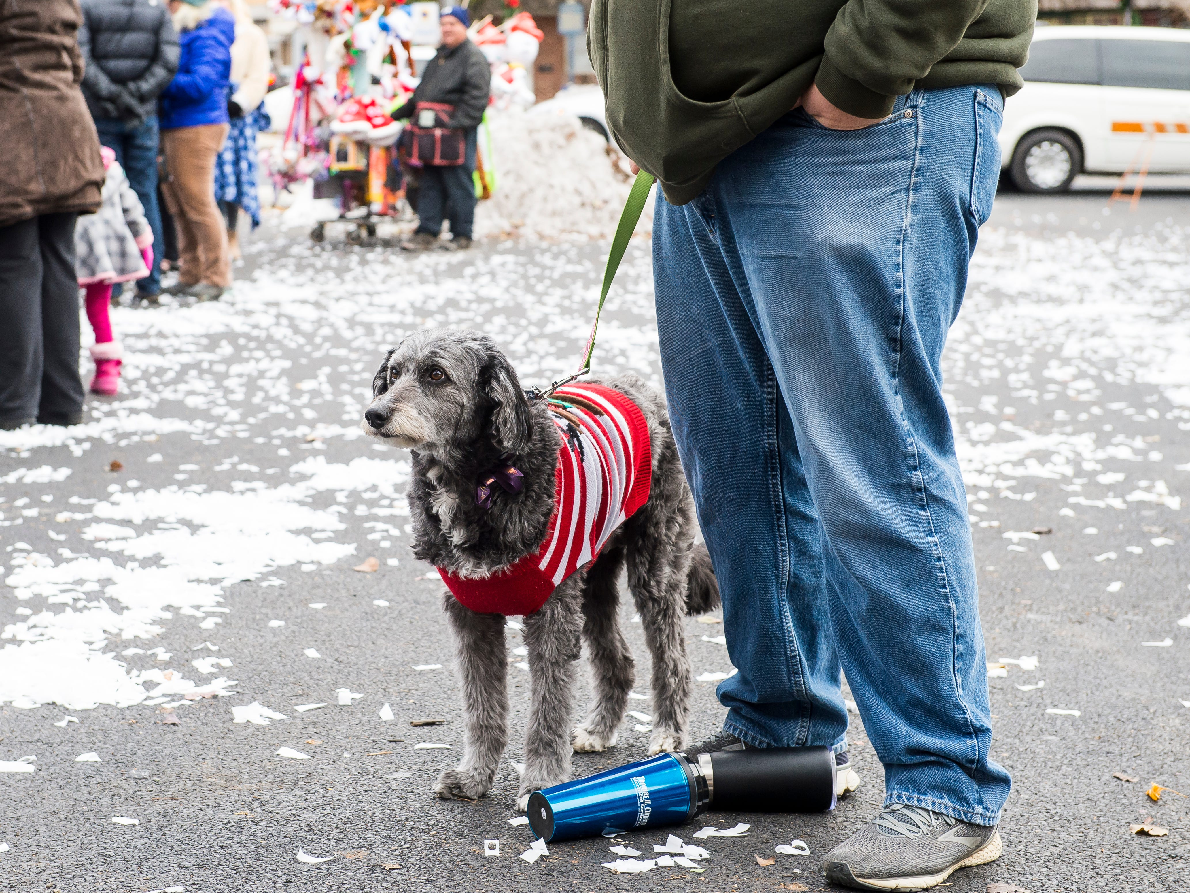 Sadie, a 5-year-old border poodle, and her owner, Vince Adams, stand near Santa's cabin following the annual Hanover Christmas parade on Friday, November, 23, 2018.