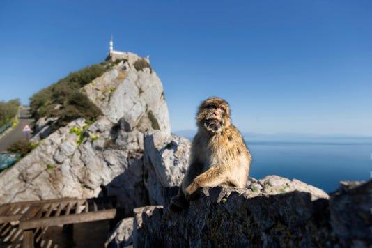 Ap Gibraltar Brexit I File Gib