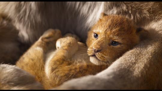 'The Lion King' turns 25: Whoopi Goldberg, Cheech Marin showed teeth as hilarious hyenas