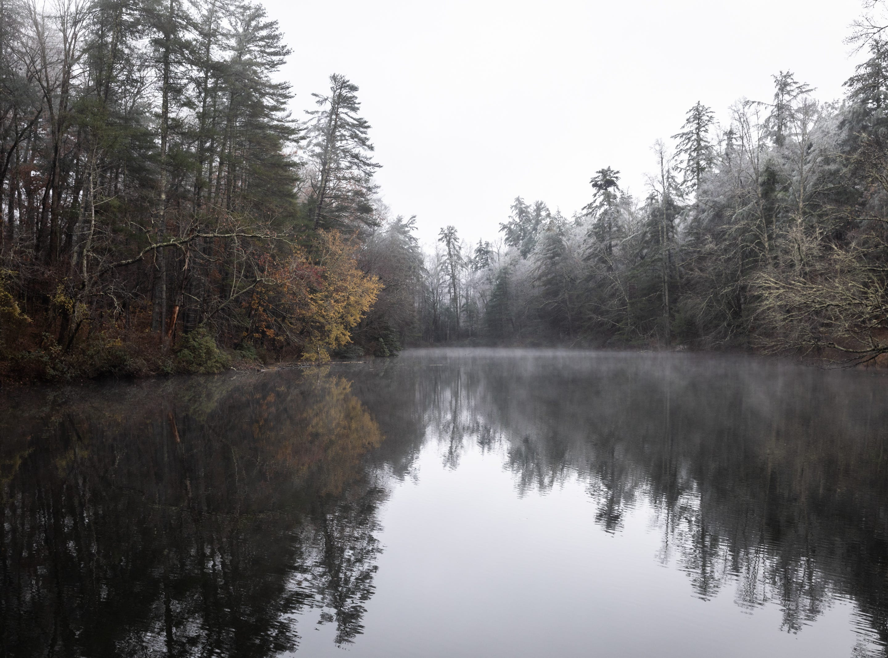 Fog rises from the pond at the Carl Sandburg home in Flat Rock where the park celebrated its 50th anniversary Nov. 24, 2018, with their Christmas at Connemara event featuring live music, storytellers and tours of the home.