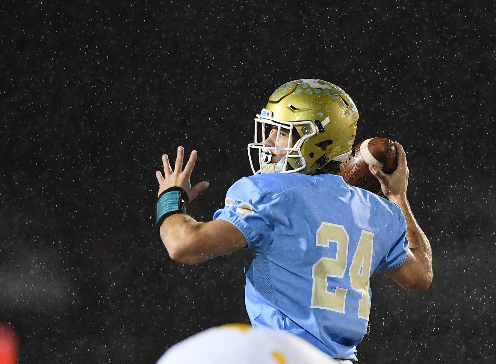 Daniel quarterback Tyler Venables (24) passes against Wren during the third round of the class AAAA playoffs Friday, November 23, 2018, at Daniel High in Central.