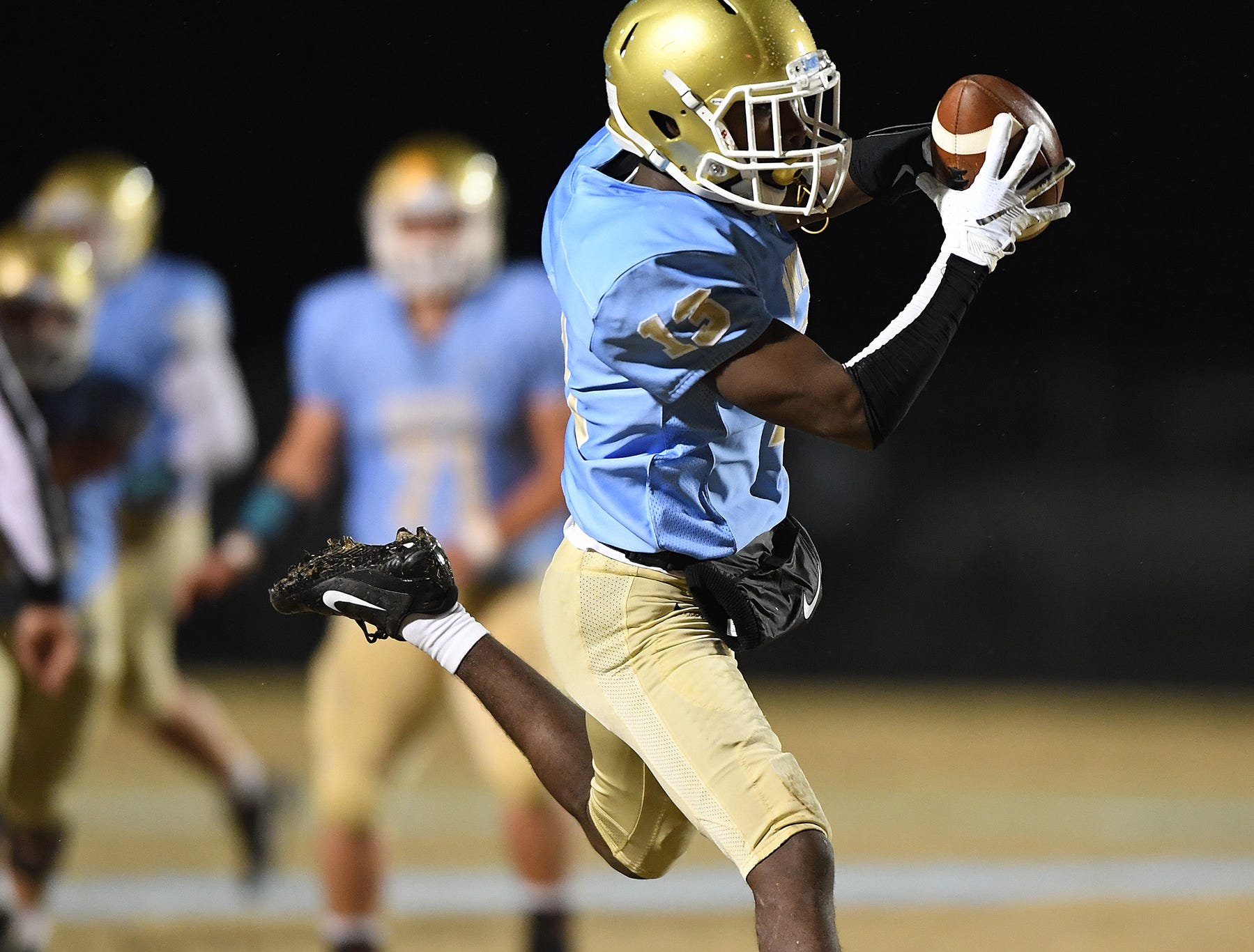 Daniel's Javares Hamilton (13) makes a reception against Wren during the third round of the class AAAA playoffs Friday, November 23, 2018, at Daniel High in Central.