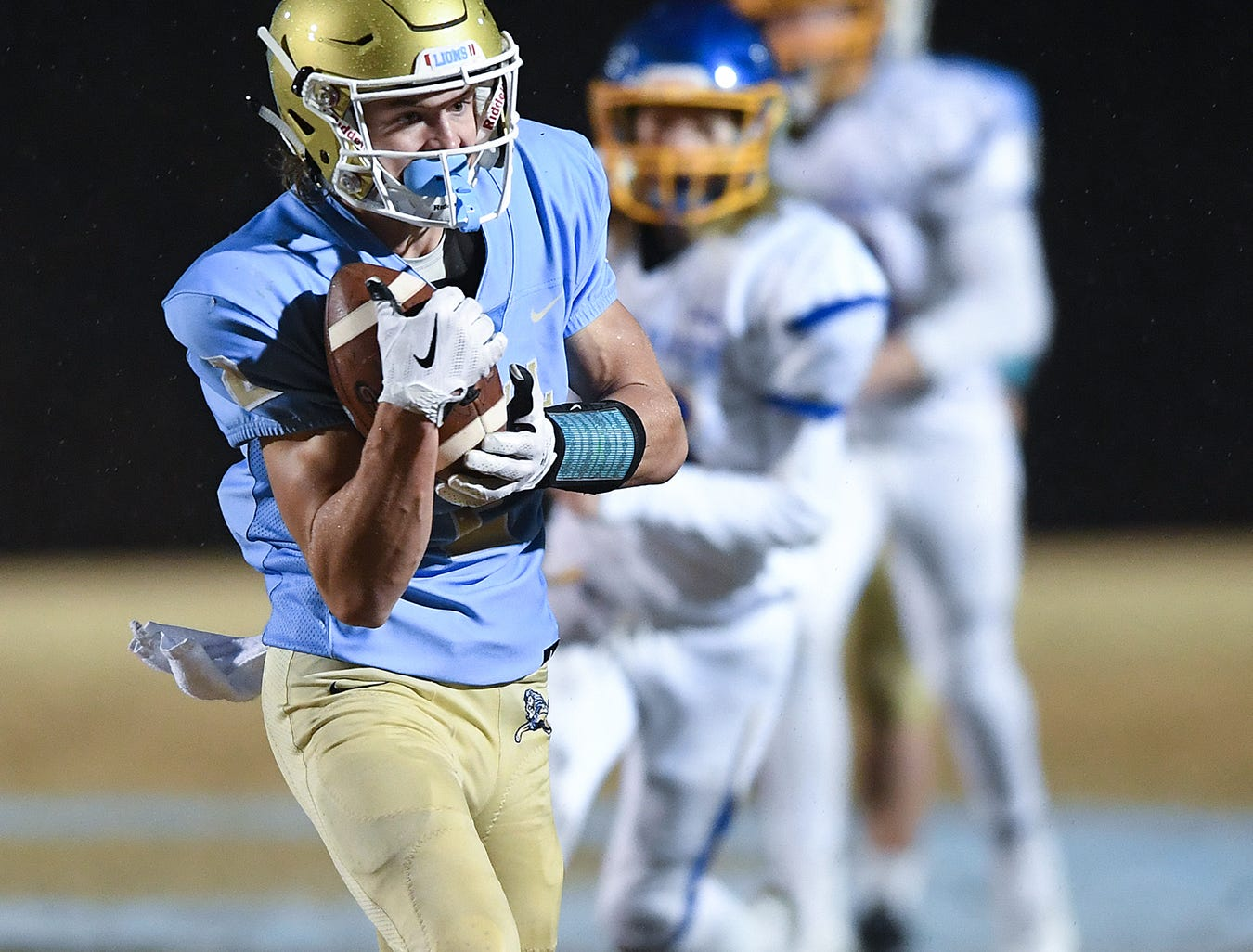 Daniel's Hampton Earle (2) makes a reception against Wren during the third round of the class AAAA playoffs Friday, November 23, 2018, at Daniel High in Central.