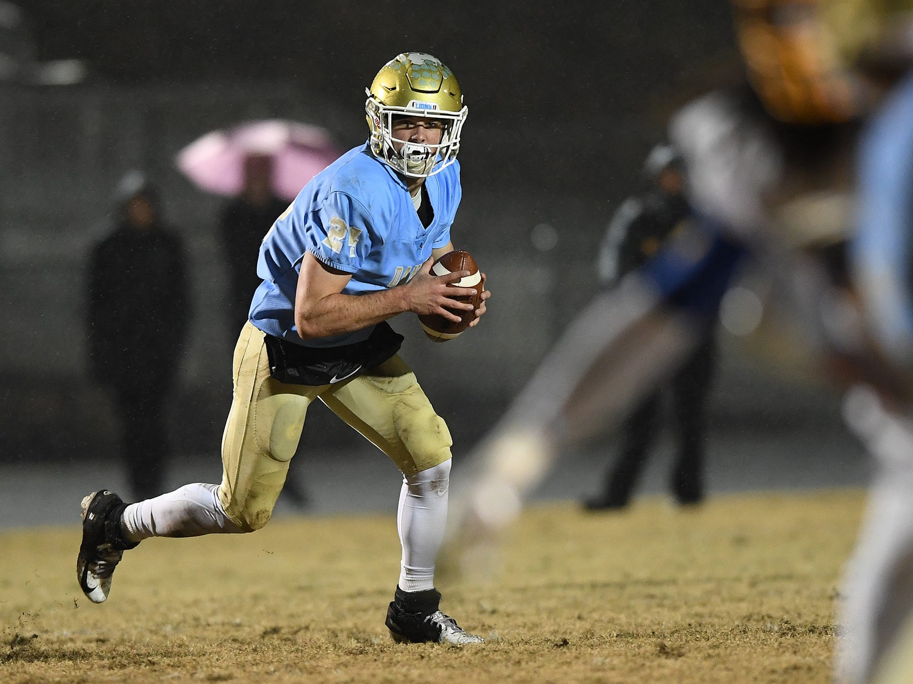 Daniel quarterback Tyler Venables (24) plays against Wren during the third round of the class AAAA playoffs Friday, November 23, 2018, at Daniel High in Central.