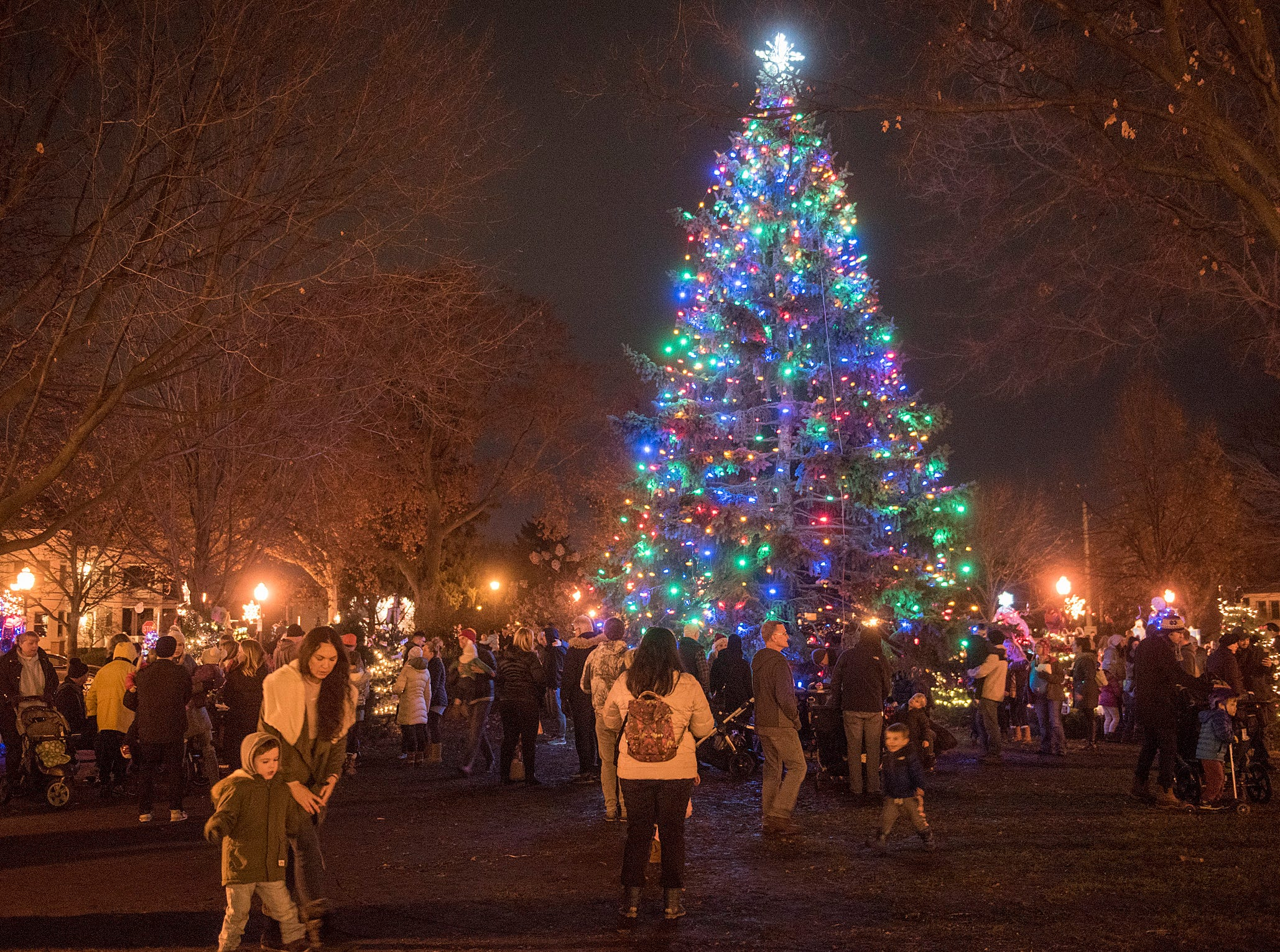 Plymouth's holiday tree lights up Kellogg Park.