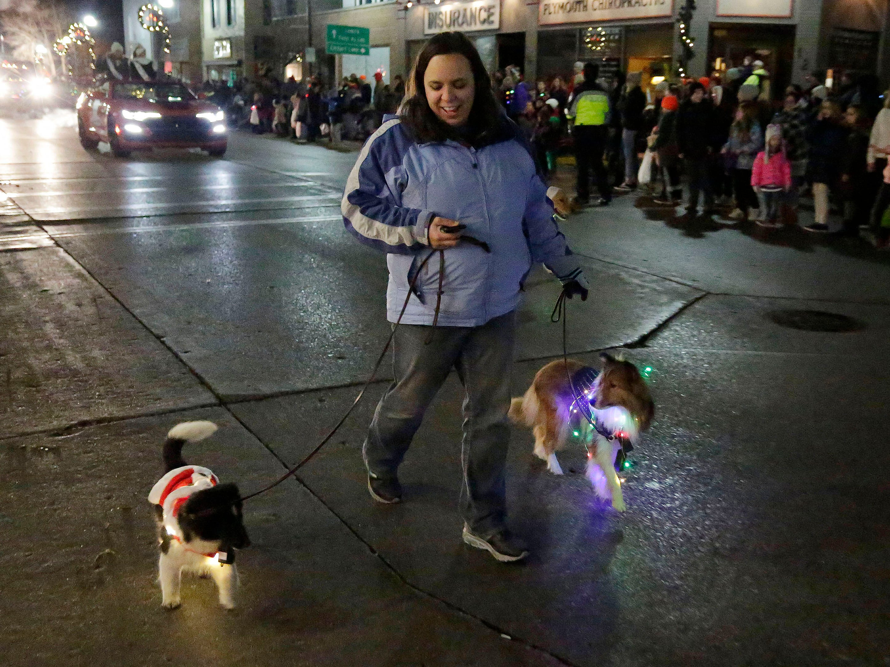 Dogs were decorated with holiday lights in the Plymouth Christmas Parade, Friday, November 23, 2018, in Plymouth, Wis.
