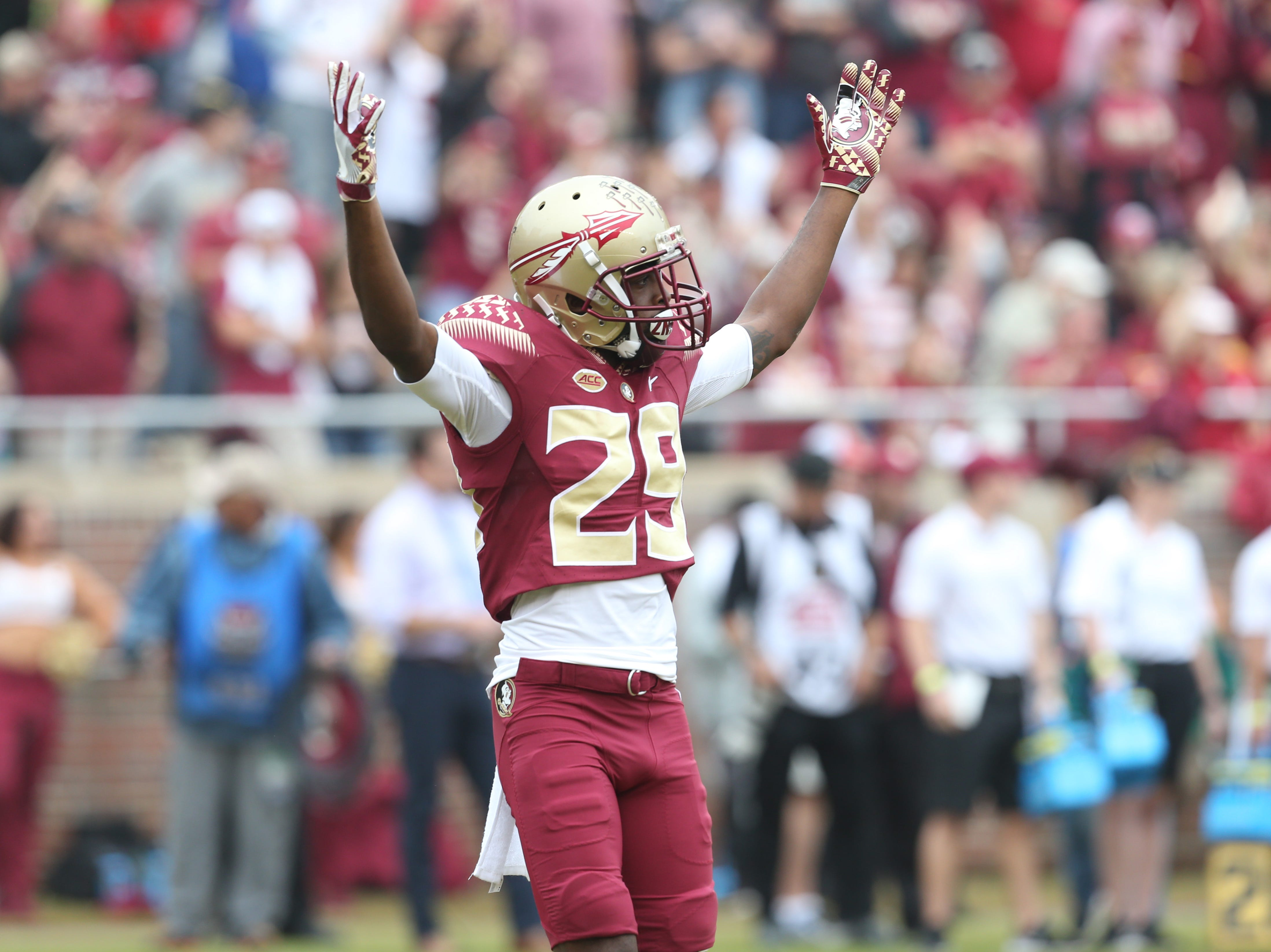Florida State Seminoles wide receiver D.J. Matthews (29) hypes up the crowd as the Florida State Seminoles take on their rival the Florida Gators in college football at Doak S. Campbell Stadium, Saturday, Nov. 24, 2018.