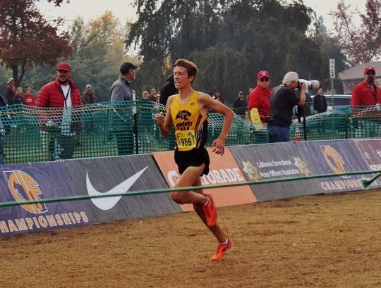 Newbury Park High's Nico Young wins the Division 2 race at the state cross country championships Saturday in Fresno. Young became the fifth boys runner in Ventura County history to win a state cross country title while leading the Panthers to the program's first state title.