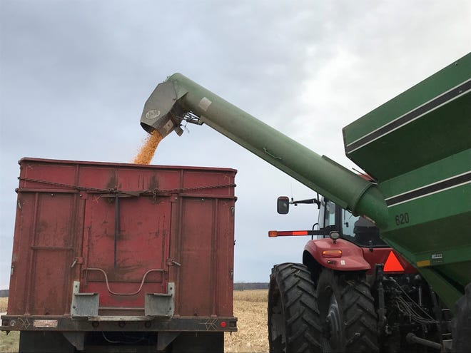 As farmers hustle to finish the harvest, there is no sign of a letup in the long-term slump in commodity prices that are now being fed by trade and tariff tensions.
