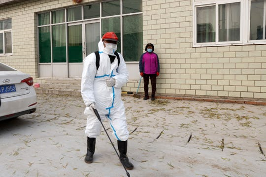 A worker sprays disinfectant near a sealed off pig farm after the latest incident of African swine fever outbreak on the outskirts of Beijing, China, Friday, Nov. 23, 2018.