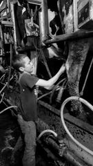 Max Tilderquist, now 10, looks forward to Suzy, the daughter of his first cow,  Seven, delivering another calf soon.