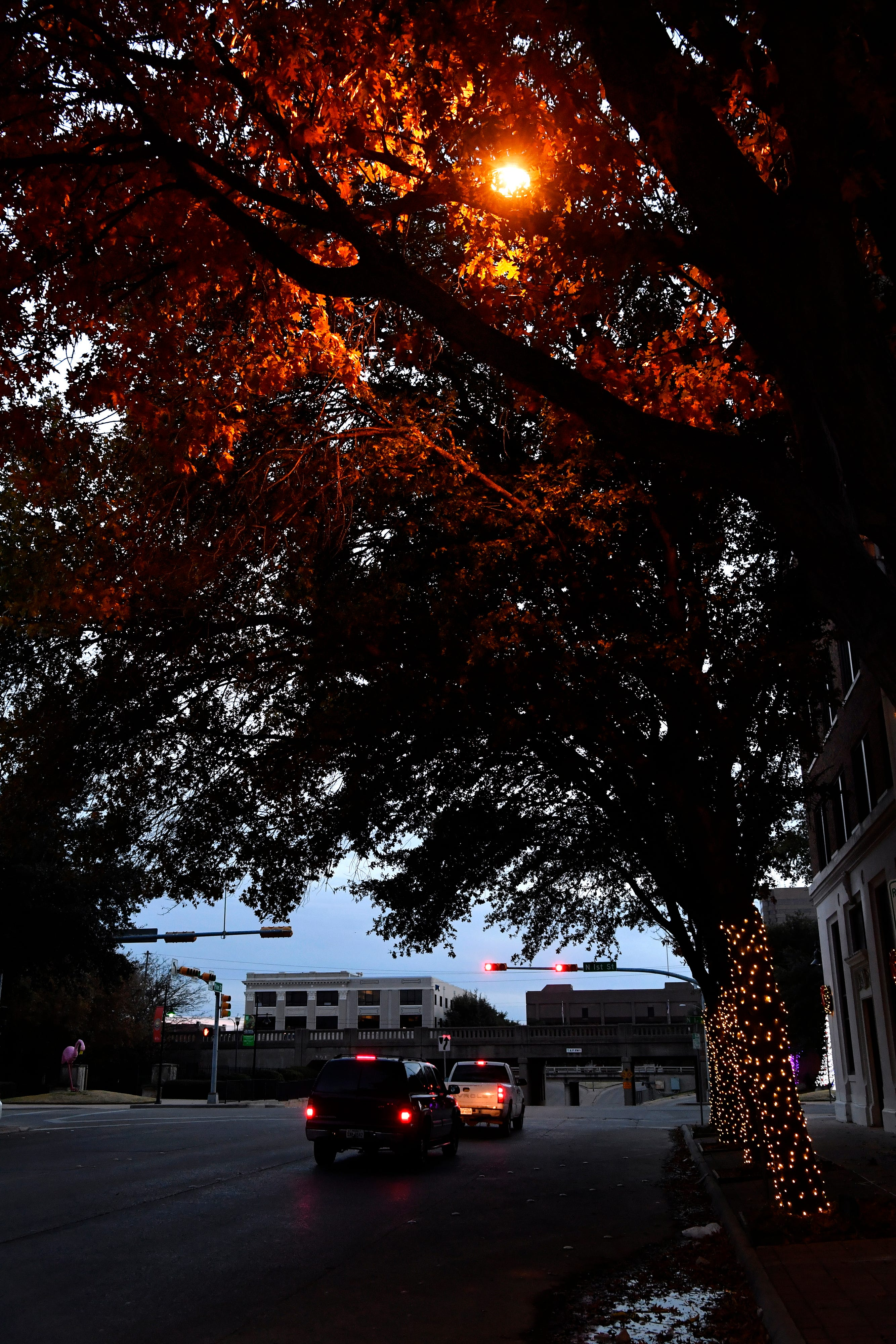 Cars wait for the light at North First and Pine streets as a streetlight casts an orange glow over leaves already turning orange.