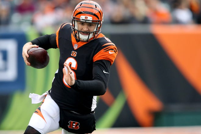 Cincinnati Bengals quarterback Jeff Driskel (6) runs out of bounds in the fourth quarter of an NFL Week 12 football game against the Cleveland Browns, Sunday, Nov. 25, 2018, at Paul Brown Stadium in Cincinnati.