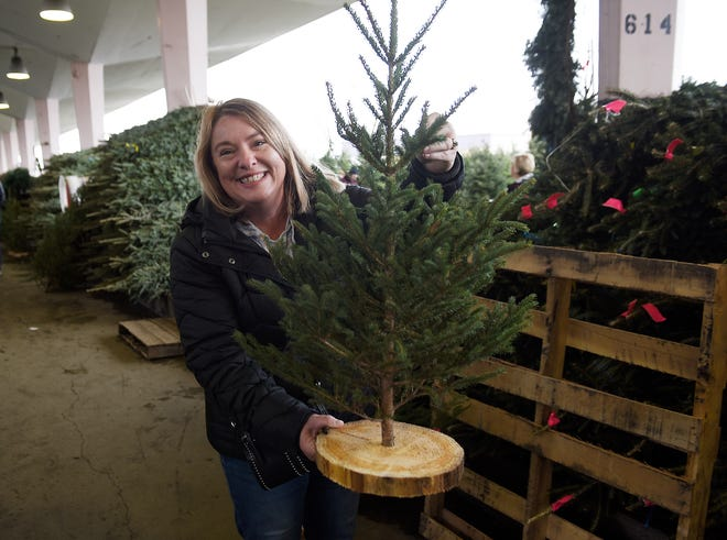 "Mary Beth Frank of White Lake, displays her three-foot ""Charlie"" Christmas tree she bought at Eastern Market on Sunday"