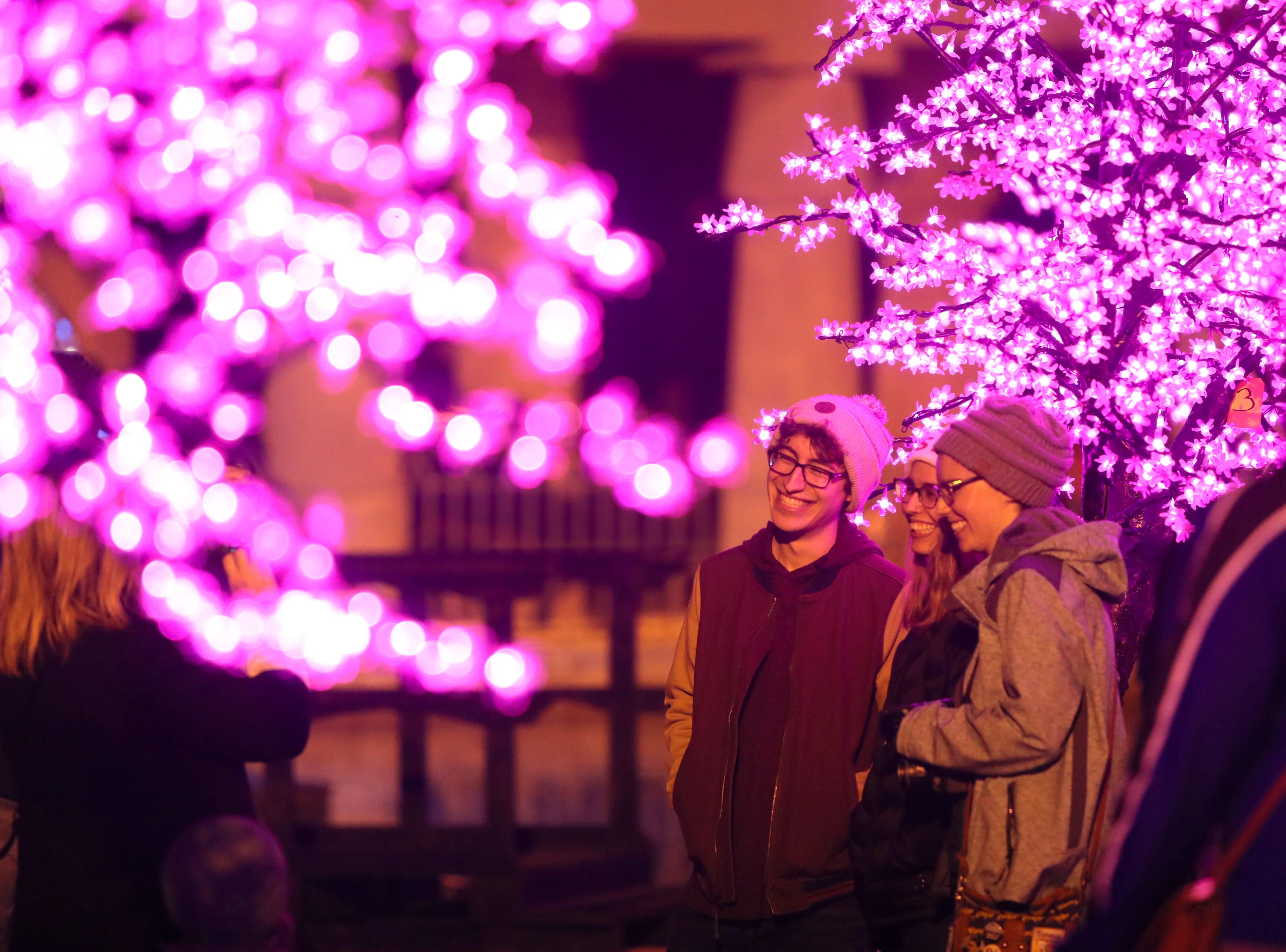 Zoo Lights, a holiday season event at the Memphis Zoo Saturday, Nov. 24, 2018.