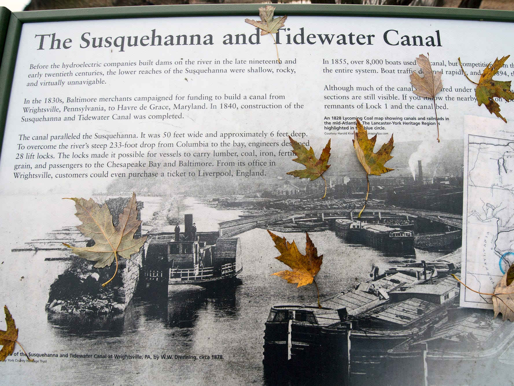 Wet, colored leaves stick to a plaque for the Susquehanna and Tidewater Canal in Wrightsville on Sunday November 25, 2018.
