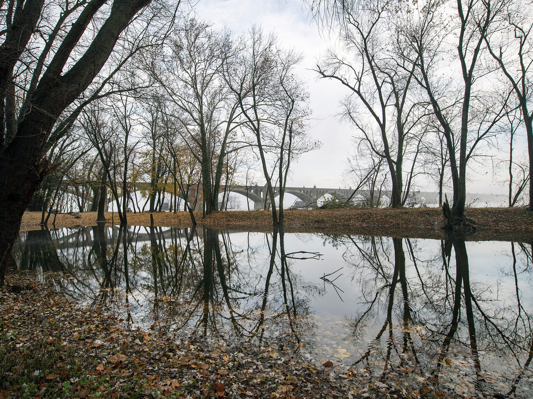 The flooded remains of the Susquehanna and Tidewater Canal in Wrightsville reflects the bare trees on Sunday November 25, 2018.