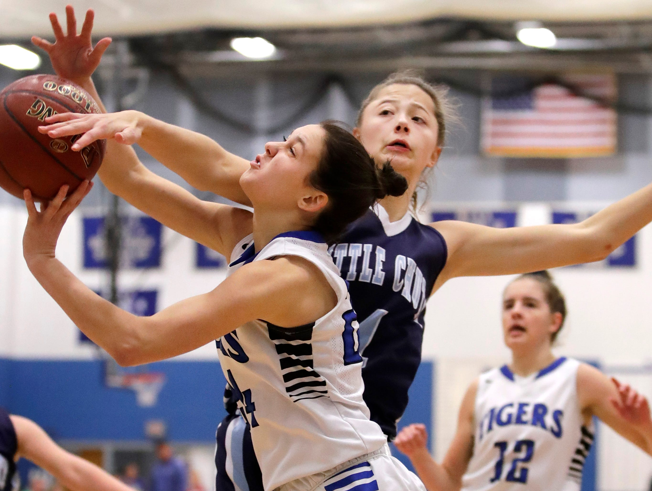Wrightstown High School's Autumn Diny tries to get a shot past Little Chute High School's Hannah VandenBerg Tuesday, Nov. 20, 2018, in Wrightstown, Wis.Danny Damiani/USA TODAY NETWORK-Wisconsin