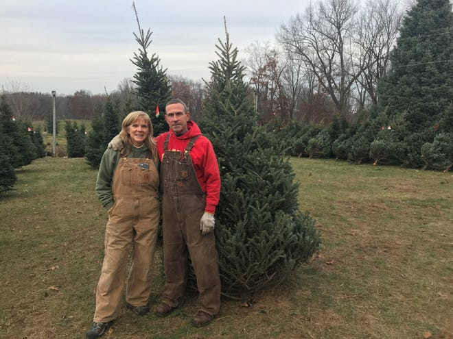 Cindy and Bruce Wilson have owned and operated Wilson's Tannenbaum Farm for 30 years.