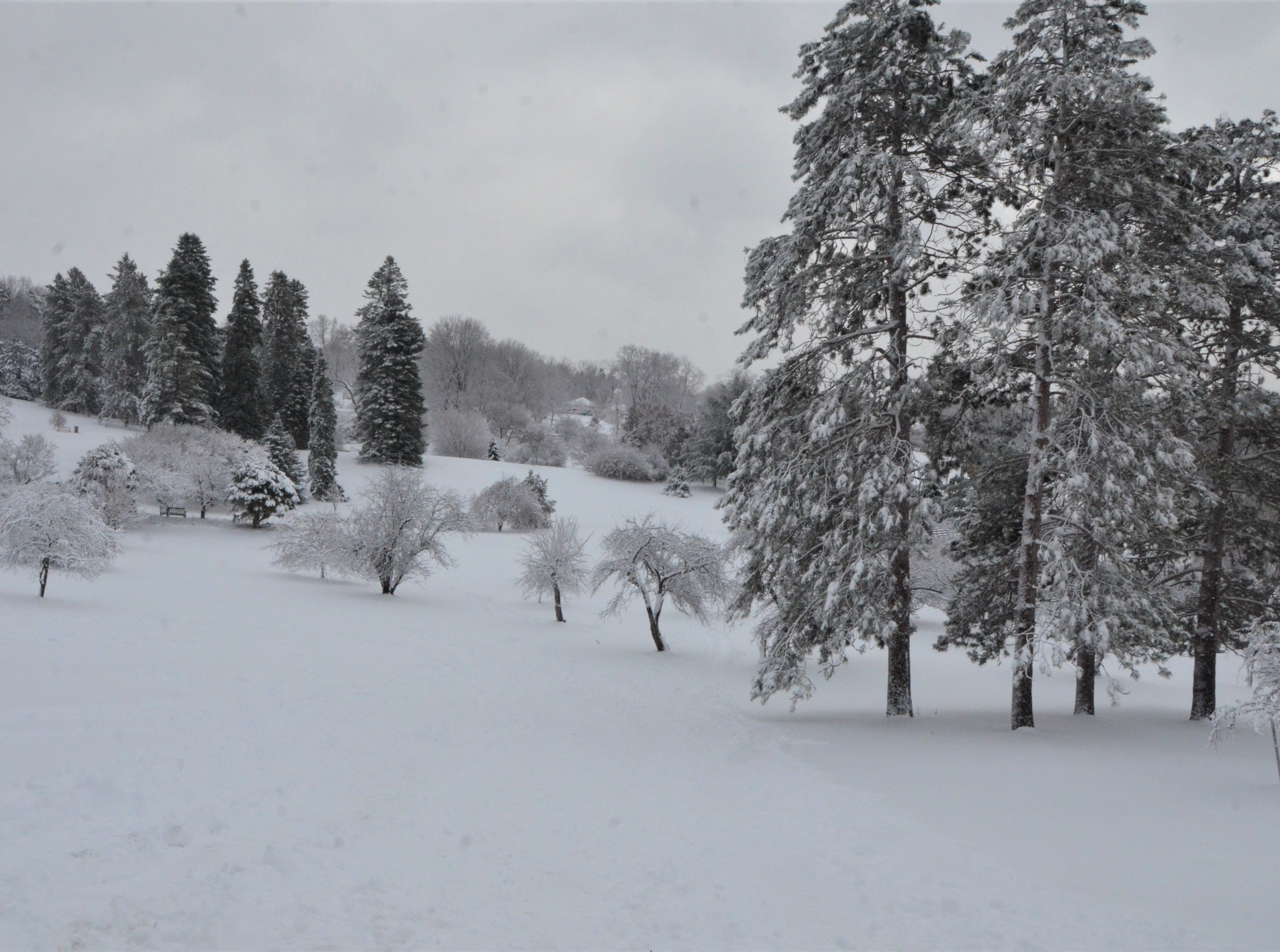 Leila Arboretum at 928 West Michigan Avenue in Battle Creek is a municipally-owned 72-acre property, with rolling hills that are ideal for sledding, snowshoeing or cross country skiing. It is open daily, from dawn until dusk.