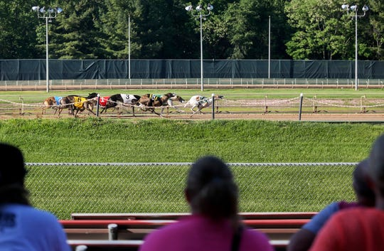 Spectators watch a race at Iowa Greyhound Park in Dubuque on Saturday, May 26, 2018.