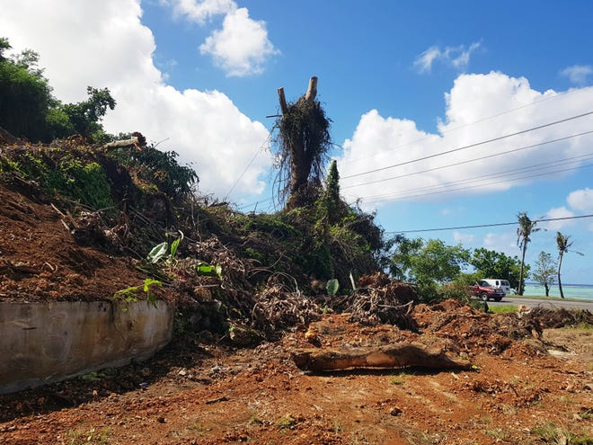Clearing for parking lot for a planned dialysis center in East Agana was put to a stop after Department of Public Works gave a notice of violation for not having the proper grading permit. The clearing is shown on Nov. 26, 2018.