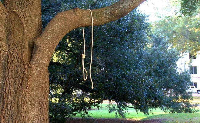 In this photo provided by WLBT-Channel 3, a noose hangs on a tree on the state Capitol grounds in Jackson, Miss. on Monday, Nov. 26, 2018. A Mississippi official says two nooses and six signs were found on the grounds of the Mississippi state Capitol. Chuck McIntosh, a spokesman for the Mississippi Department of Finance and Administration, which oversees the Capitol, says the nooses and signs were found Monday morning between 7:30 a.m. and 8 a.m. (WLBT-TV via AP)