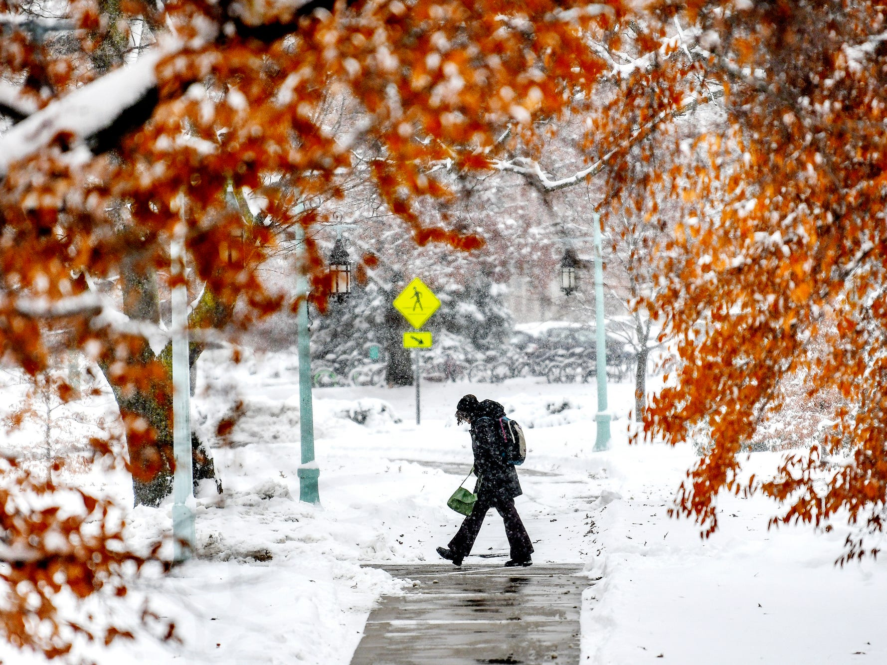 A pedestrian walks along a path near trees still showing signs of fall on Monday, Nov. 26, 2018, on the Michigan State University campus in East Lansing.