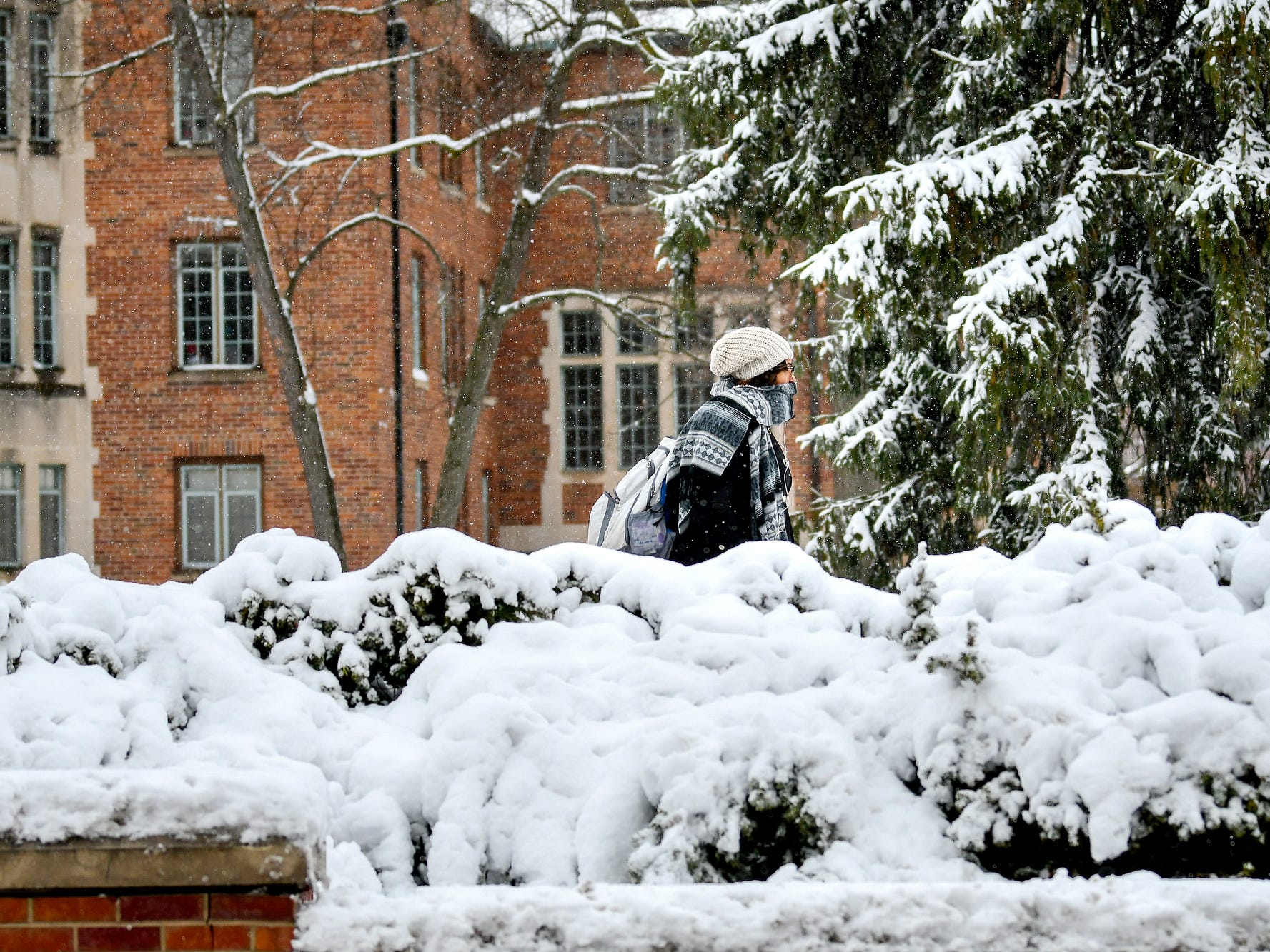 A pedestrian passes by snow-covered bushes outside Landon Hall on Monday, Nov. 26, 2018, on the Michigan State University campus in East Lansing.