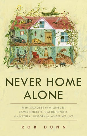 """Never Home Alone"""