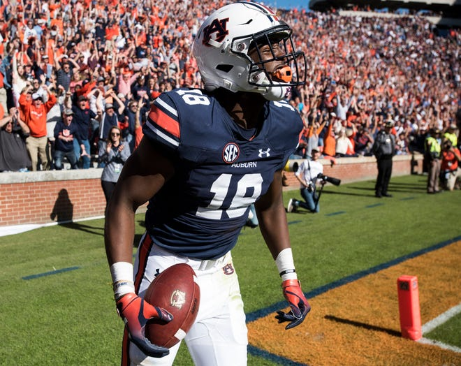 Auburn wide receiver Seth Williams (18) celebrates after catching a late fourth-quarter touchdown against Texas A&M at Jordan-Hare Stadium on Saturday, Nov. 3, 2018. Auburn defeated Texas A&M 28-24.