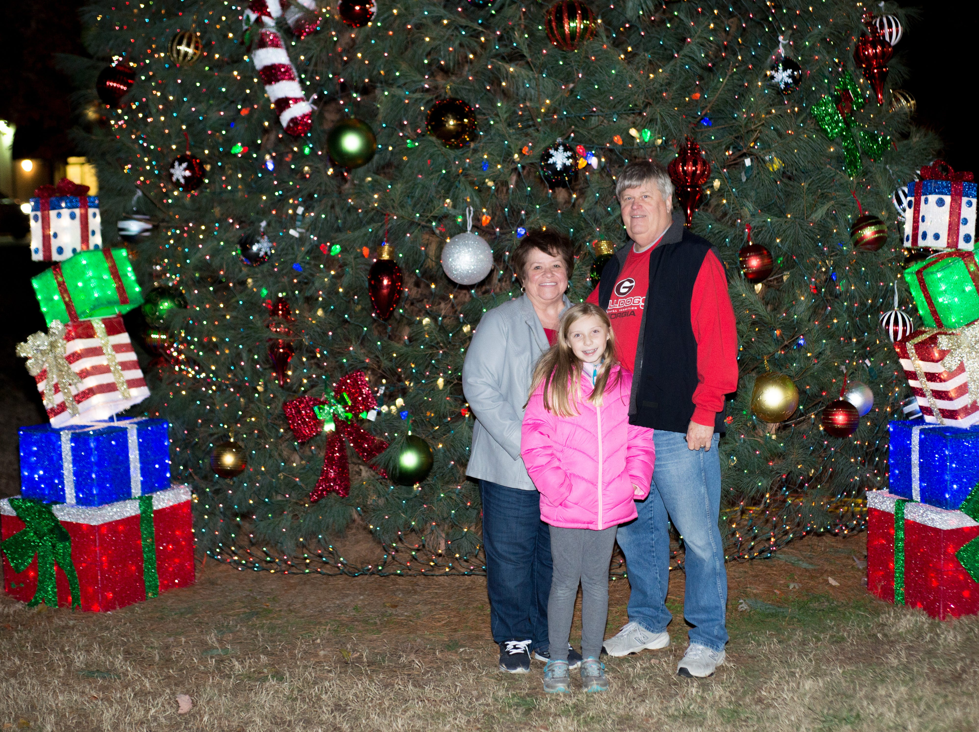Attendees enjoy the Hendersonville HolidayFest Annual Tree Lighting Ceremony at Memorial Park on Sunday, Nov. 25.