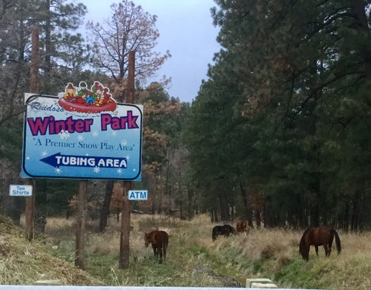 Wild horses are often seen near Ruidoso Winter Park just before opening day. The park opened for the 2018-2019 season on November 22, Thanksgiving day.
