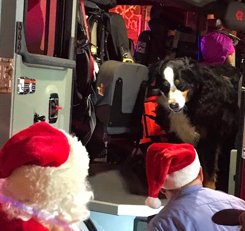 The famous Stella, of Stella's Black Dog Tavern, thinks about climbing down from the fire tuck she rode it to the holiday tree lighting. The folks at Stella's arranged for Temeni Woods and her kids, Skylie, Taelyn, Kaycon, Kaymon, and Olivia, to ride in the fire truck and be onstage to help with lighting the Kellogg Park tree.