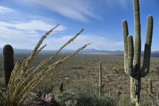 Distant peaks on the horizon from Brown Mountain Trail, Tucson.