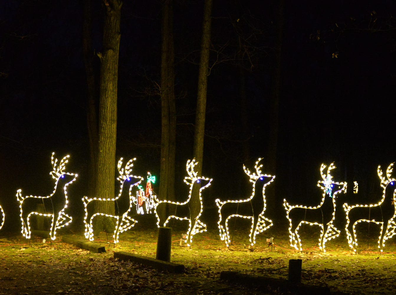 Holiday Lights In The Park at Lebanon's Coleman Memorial Park presented Wednesday through Sunday evenings by the The Community of Lebanon Association through December 30.